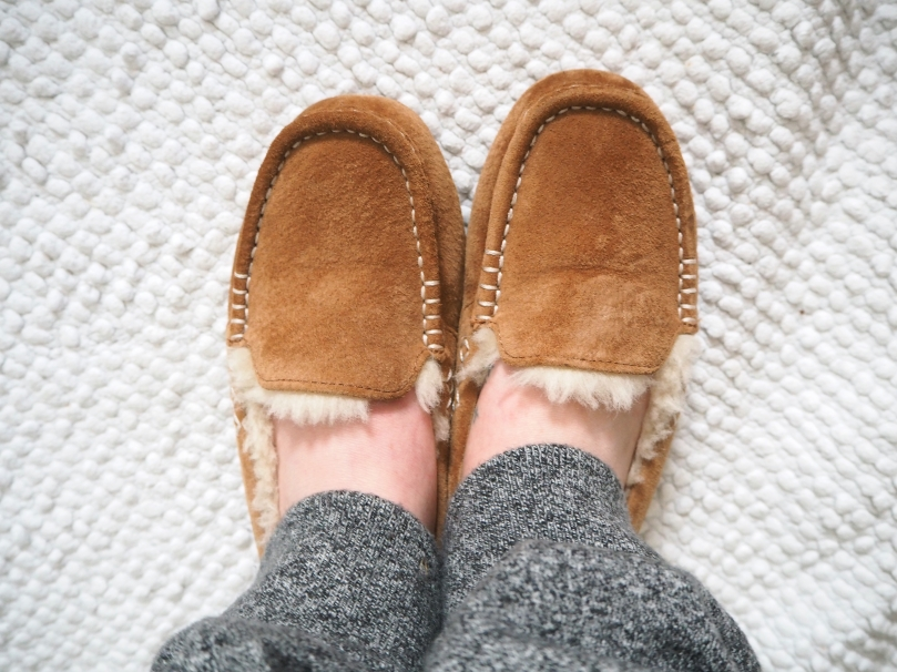 SLIPPERS - a day at a time.jpg